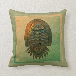 Neometacanthus Fossil Trilobite Pillow