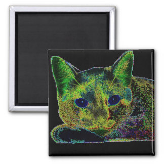 Neon Blue Eyed Cat Refrigerator Magnet