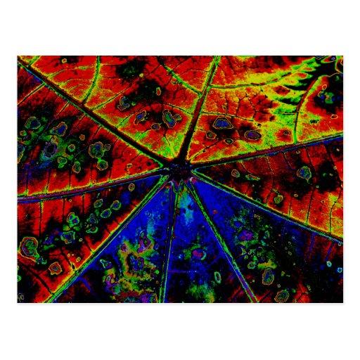Neon Castor Plant Leaf Post Cards