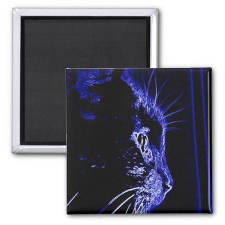 Neon Cat 2 Inch Square Magnet