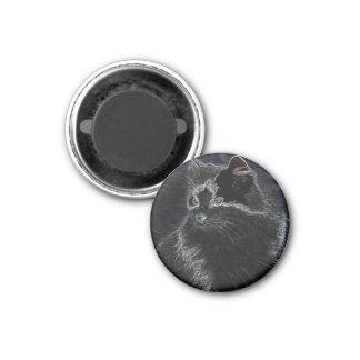 Neon Cat Refrigerator Magnets