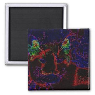 Neon Cat Fridge Magnet