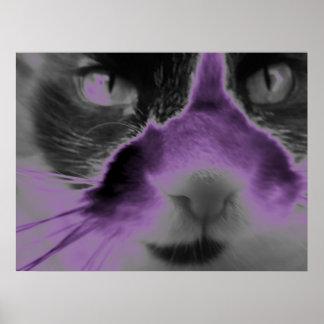 Neon Cat Purple Poster