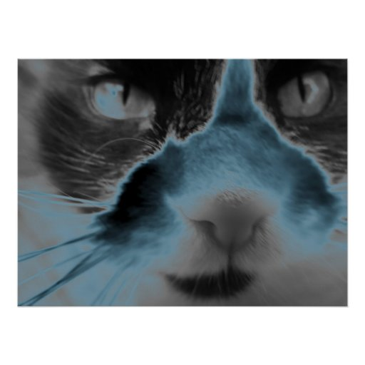 Neon Cat - Turquoise Poster