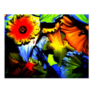 Neon Daffodils Postcard