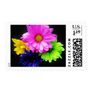 neon daisy international stamps