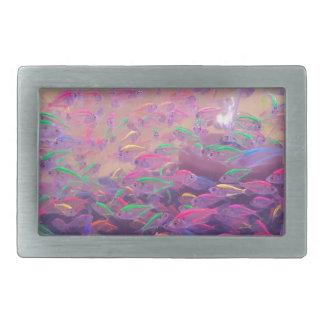 Neon Fish In An Aquarium Belt Buckle