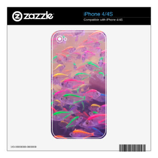 Neon Fish In An Aquarium Decal For The iPhone 4S