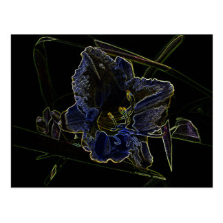 Neon Glow Daylily Flower with Glowing Edges Postcard