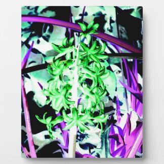 Neon Green Hyacinth Plaque