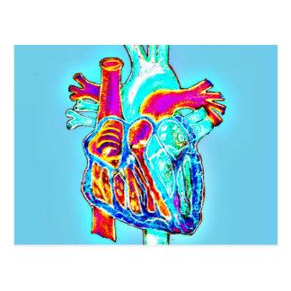 Neon Hand Drawn Anatomical Heart Postcard