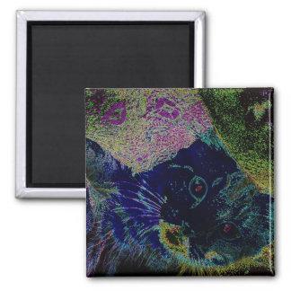Neon Kitten Magnet