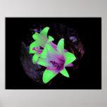 Neon Lilies Photograph Poster / Print
