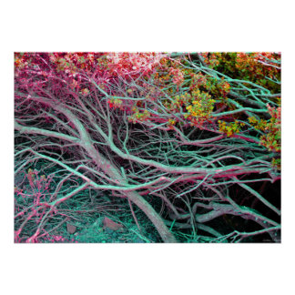 """Neon Nature Poster (28"""" x 20"""")"""