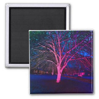 Neon Pink Dayglo Winter Tree Magnet