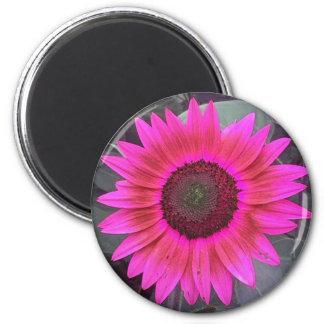 Neon Pink Sunflower Magnet