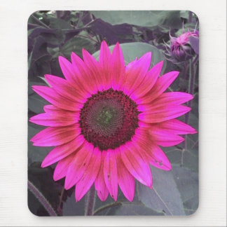 Neon Pink Sunflower Mousepad