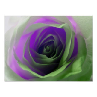 Neon Rose Photograph Poster