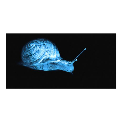Neon snail picture card
