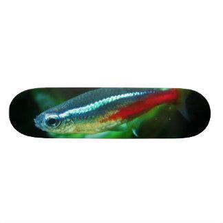 Neon Tetra Fish Paracheirodon Innesi Skateboard Deck