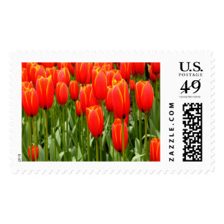 Neon Tulips Large Postage Stamp