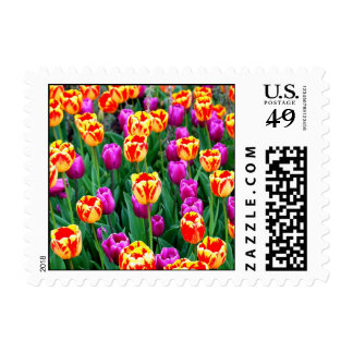 Neon Tulips Stamps