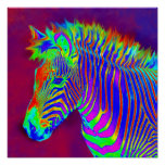 neon zebra-closeup poster