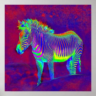 neon zebra print