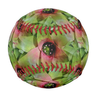 Neoregelia Bromeliad 'Tossed Salad' Baseball