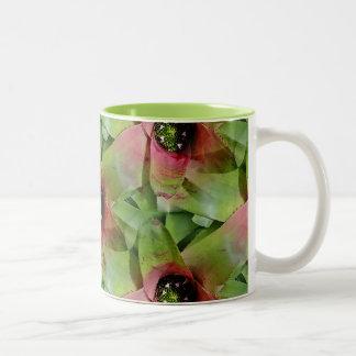 Neoregelia Bromeliad 'Tossed Salad' Mug
