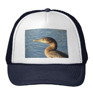 Neotropic Cormorant Mesh Hats