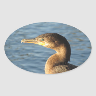 Neotropic Cormorant Oval Sticker