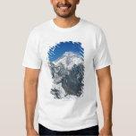 Nepal, Himalaya, vista de Mt Everest de Gokyo Polera