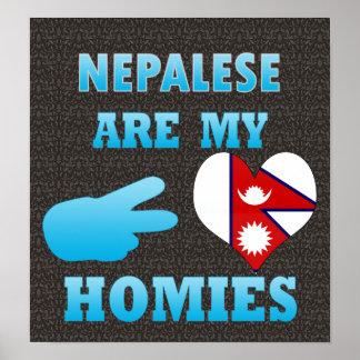 Nepaleses son mi Homies Póster