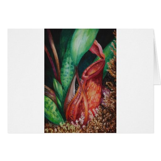 Nepenthes del arte de la acuarela de Borneo Tarjeta De Felicitación