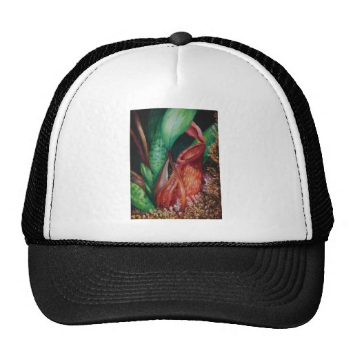 Nepenthes Of Borneo Watercolor Art Mesh Hats