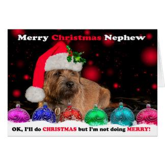 Nephew Grumpy Border Terrier Dog In Santa Hat Humo Card