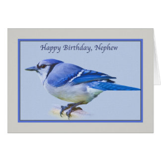 Nephew's Birthday Card with Blue Jay Bird