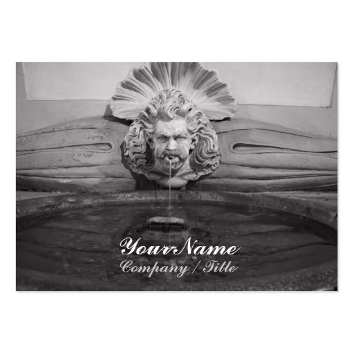 Neptune Drinking Fountain Business Cards