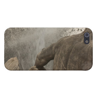 Neptune fountain Duesseldorf iPhone 5 Cover
