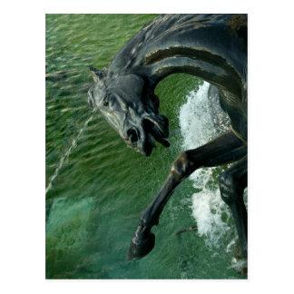 Neptune Fountain, Washington DC Postcard