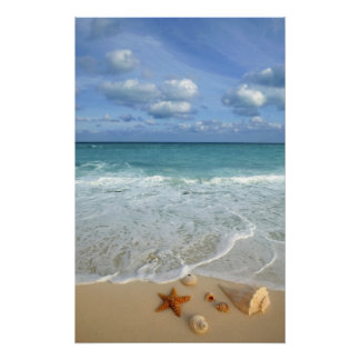 Neptune s Gifts Seascape Poster