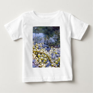 Neptune's Necklace Baby T-Shirt