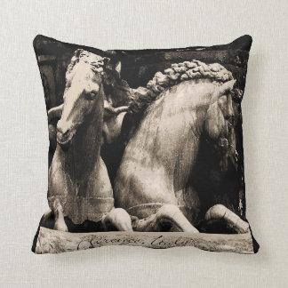 Neptune's Hoses Pillows