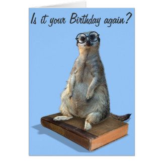 Nerdy Meerkat, hipster, goofy, librarian, funny Cards