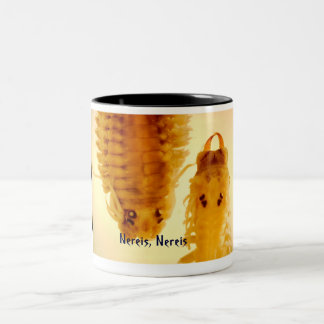 Nereis, taza de Nereis