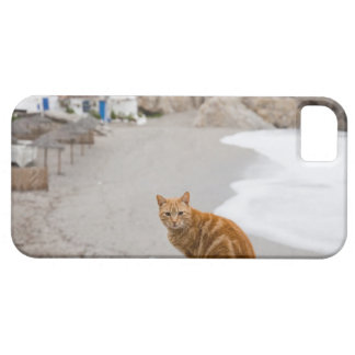 nerja malaga andalusia spain iPhone SE/5/5s case