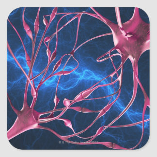 Nerve synapses, computer artwork. square stickers