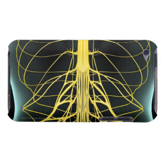 Nerves of the Lower Back iPod Touch Case