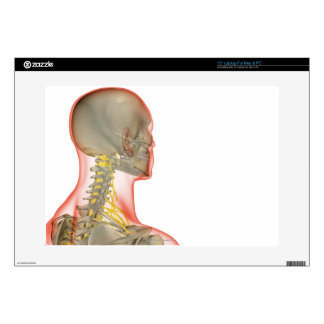 """Nerves of the Neck 2 15"""" Laptop Decal"""